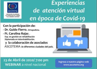 Webinar Experiencias de Atención Virtual en época de Covid-19