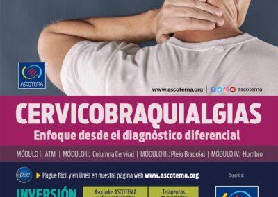 Protegido: Curso Cervicobraquialgias